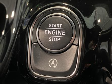 MERCEDES-BENZ B 250 4M Progressive Achteruitrij Camera, Led High Performance, Park Pilot