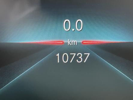MERCEDES-BENZ A 200 Amg Panorama, Night Pack, Sfeerverlichting, Mbux, Multibeam